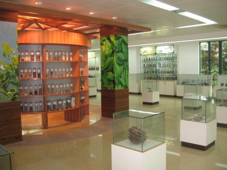 岭南中药博物馆 (常用药材展示厅)